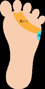 足裏|肩こり反射区