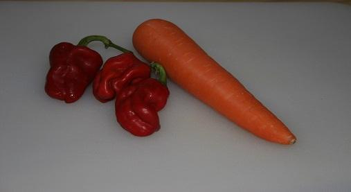 ミックス野菜氷
