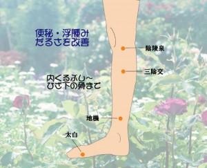 便秘・むくみ・足のだるさに効くふくらはぎマッサージ4