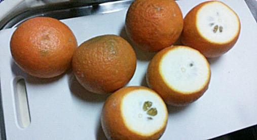 おうちで超~簡単果実酒作り!?橙(ダイダイ)で風邪やガン予防!