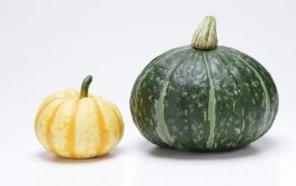 カボチャの主な栄養分とすごい効能まとめ|保存方法や料理レシピも