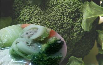 ブロッコリーの主な栄養分とすごい効能まとめ|保存方法や料理レシピも