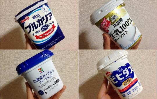 おいしいヨーグルトプレーン無糖450g|生存型ビフィズス菌LKM512・9