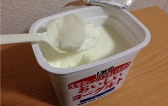おいしいヨーグルトプレーン無糖450g 生存型ビフィズス菌LKM512・6