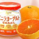 日本ルナ「バニラヨーグルト有田みかん」再販へ~期間限定