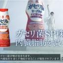 向井理テレビ新CM・式典編|恵ガセリ菌S株ヨーグルトドリンク