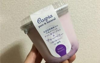 フジッコ「カスピ海ヨーグルト&ブルーベリー」←百貨店限定?味わいリッチなヨーグルト!
