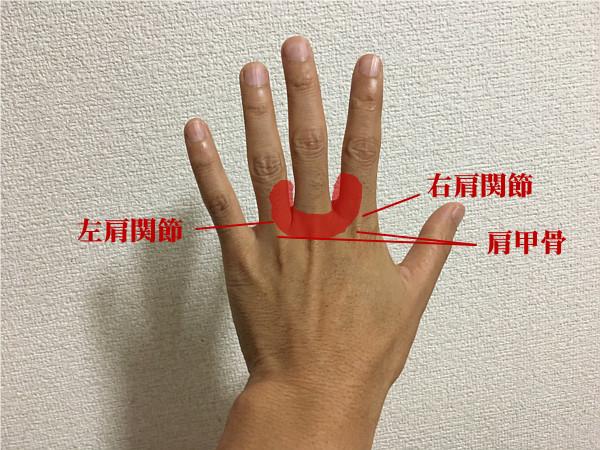 指ヨガで「肩こり」を解消するコツ!?首と肩のセットでもみほぐす!6
