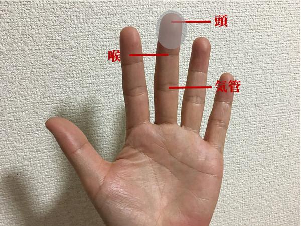 指ヨガで「頭痛・偏頭痛」を解消するコツ!?毎日行うのがポイント!