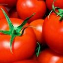 トマトの種類と栄養・健康効果|βカロテン・リコピン・ビタミンC・B6など