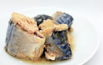 鯖(まさば)の栄養成分と健康効果・効能|青魚は、脳も・体も・血管も若する食品