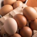 卵の栄養成分と健康効果・効能|レチノール(ビタミンA)・レシチン・たんぱく質・カルシウム・ビタミンB群・Eほか